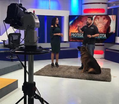 Entrevista para Televisa